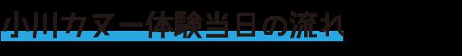小川カヌー体験当日の流れ